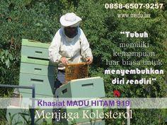 Madu hitam 919 merupakan madu pahit yang kaya khasiat dan manfaat untuk kesehatan tubuh. Madu hitam 919 memiliki kandungan glukosa yang rendah, sangat cocok digunakan sebagai suplemen kesehatan penderita diabetes. Selain itu, madu hitam  919 memiliki kandungan alkaloid yang tinggi berperan sebagai anti infeksi yang membantu mempercepat proses penyembuhan penyakit. Kami melayani pengiriman ke seluruh Indonesia menggunakan JNE. Pengiriman dari kota Semarang, Jawa Tengah Cp 0858.6507.9257 Whatsapp Messenger, All Over The World