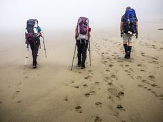How to Enjoy The  West Coast Trail.  West Coast Trail, Pacific Rim National Park, British Columbia