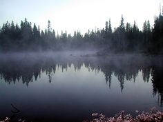 My photograph of a misty morning in Washington State on the Pacific Crest Trail.