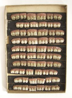 """Not teeth in general but this particular """"collection"""" of them. Pot Pourri, Curiosity Shop, Weird And Wonderful, Tooth Fairy, Dentistry, Hot Dog Buns, Medical, Dental Care, Project 100"""