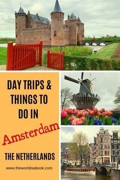 5 Unique Day Trips and Things to do in Amsterdam With Kids - The World Is A Book Europe Destinations, Europe Travel Tips, Usa Travel, Travel Guides, Amsterdam With Kids, Day Trips From Amsterdam, Amsterdam Holidays, Visit Amsterdam, Amsterdam Travel