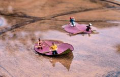 Up the creek without a boat... | By Cathy Scola