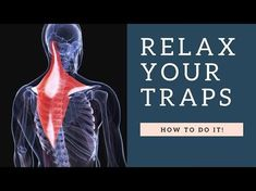 RELAX a Painful Tight Trapezius Muscle in Neck Fast: Exercises, Stretches, Massage & Posture Fixes Muscles Of The Neck, Neck And Shoulder Muscles, Shoulder Posture, Muscle Stretches, Neck Exercises, Neck Stretches, Shoulder Stretches, Stretching Exercises, Muscle Pain Relief