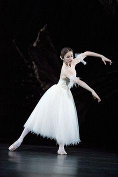 The Royal Ballet Ballet Images, Ballet Pictures, Ballet Art, Ballet Dancers, Ballerinas, Dance Photos, Dance Pictures, Ballet Shows, Dance Dreams