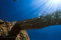 bridge by pablobakaikoa #nature #photooftheday #amazing #picoftheday #sea #underwater