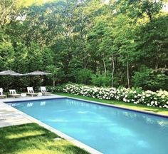 Building A Swimming Pool, Swimming Pool Landscaping, Swimming Pools Backyard, Pool Spa, Swimming Pool Designs, Modern Landscaping, Backyard Landscaping, Landscaping Ideas, Pool And Patio