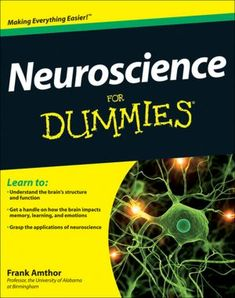 Neuroscience for Dummies, by Frank Amthor
