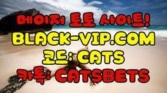 스포조이분석か BLACK-VIP.COM 코드 : CATS 스타크래프트베팅 스포조이분석か BLACK-VIP.COM 코드 : CATS 스타크래프트베팅 스포조이분석か BLACK-VIP.COM 코드 : CATS 스타크래프트베팅 스포조이분석か BLACK-VIP.COM 코드 : CATS 스타크래프트베팅 스포조이분석か BLACK-VIP.COM 코드 : CATS 스타크래프트베팅