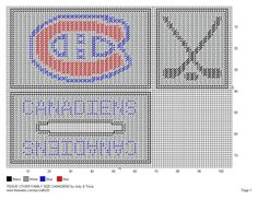 FAMILY SIZE TISSUE COVER - CANADIENS Plastic Canvas Tissue Boxes, Plastic Canvas Crafts, Plastic Canvas Patterns, Diy Perler Beads, Perler Bead Art, Montreal Canadiens, Plastic Mesh, Kleenex Box, Box Patterns