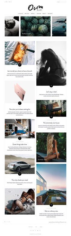 Osom is an elegant and stylish WordPress #theme ideal for magazine or blog personal website. #blogging #writer Download Now!