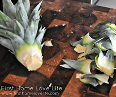 How To: Grow Your Own Pineapple - First Home Love Life.I'm allergic but my family loves them. I'll have to try it the next time we get one :) Pineapple Plant Care, Pineapple Planting, Pineapple Top, Organic Gardening, Gardening Tips, Potato Vines, Bountiful Harvest, Grow Your Own Food, Tropical Plants