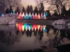 Lincoln Park Zoo Lights- Enjoy ice carving demonstrations, visits with Santa, warm drinks, cool crafts and more as you stroll through Lincoln Park Zoo decorated with more than two million beautiful lights