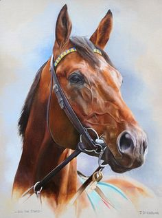Sea the Stars Print, Limited Edition Horse Racing Painting by Artist Joanna Stribbling