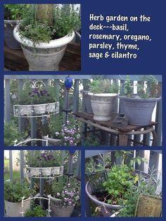 Herb garden on the deck
