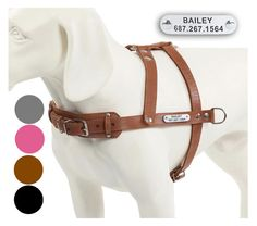 Details About Didog Brown Handmade Genuine Leather Pet Dog Harness