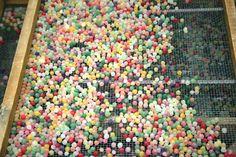 Ma quanti colori!!! @PAstiglieLeone by Cristina Pellerino