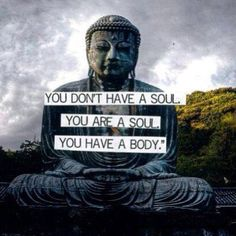 You don't have a soul, you are a soul. You have a body.   Wow. Unbelievably true and yet our bodies can become the cages for our souls. Or do our souls merely feel caged and our bodies follow suit? That seems more true.