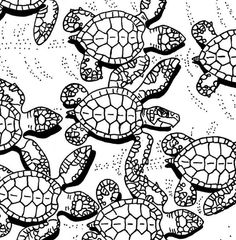 Baby Sea Turtles coloring page sea turtle art by adultcoloringbook