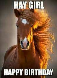 Horsey Happy Birthday!