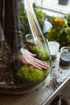 5 Inspiring (& Easy!) DIY Indoor Gardens    #refinery29  http://www.refinery29.com/urban-gardening#slide-8  Step 5: Start adding your plants and live moss.  ... #GardeningUrban
