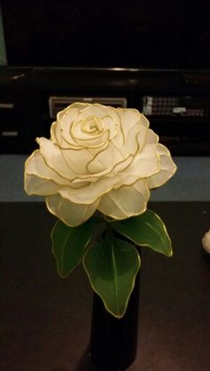 Romantic vintage white rose