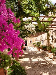 Sunlit patio at Arkadi Monasteri in Rethymno, Crete island ~ Greece