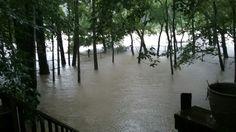 August 27 2017 Woke Up To Flooding In My Backyard Courtesy Of Hurricane Harvey Flood Backyard Outdoor