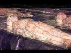 【心臓弱者は注意】ロズウェル事件の宇宙人遺体 時を経て流出