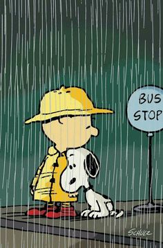 Bus Stop in the Rain, Charlie Brown and Snoopy. Comics Peanuts, Peanuts Cartoon, Peanuts Snoopy, Gifs Snoopy, Snoopy Quotes, Charlie Brown Characters, Charles Shultz, Snoopy Pictures, Joe Cool