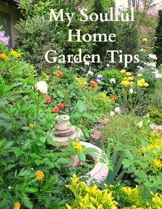Garden Tips from www.mysoulfulhome.com  Learn about natural fertilizer, dividing plants & more!