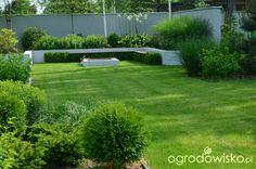 Ogród do kwadratu - strona 401 - Forum ogrodnicze - Ogrodowisko