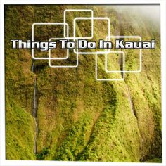 There are a lot of things to do in Kauai. You just need to check out with the travel experts. Click here- http://tripstevens.com/top-10-things-you-must-do-on-kauai