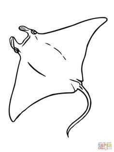 manta-coloring-page.jpg (1200×1600)