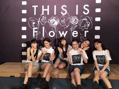 FLOWER JAPAN This is Flower
