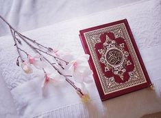 Learn Quran Academy with experienced Bible teachers of Islam. Our international institute offers multiple Islamic courses for children and adults. Islamic Images, Islamic Pictures, Al Quran Al Karim, Beautiful Morning Messages, Quran Book, Quran Wallpaper, Quran Sharif, Religious Photos, Allah Calligraphy