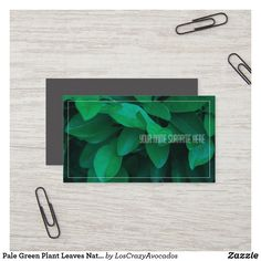 Shop Pale Green Plant Leaves Nature Feel Business Card created by LosCrazyAvocados. Green Organics, Love Natural, Nature Plants, Green Plants, Make Your Own, Business Cards, Plant Leaves, Prints, Lipsense Business Cards