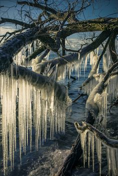 Extreme  Icicles ~  Todd Murrison on 500px ○ Canon 6D-f/f/16-1/400s-24mm-iso50, 904✱1350px-rating:94.8 ☀ Photographer: Todd Murrison, Whitby, Canada
