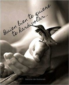Quien bien te quiere te hará volar!!. Love My Man Quotes, Motivational Words, Inspirational Quotes, Spiritual Messages, Teaching Spanish, Spanish Quotes, Life Motivation, Some Words, Beautiful Words