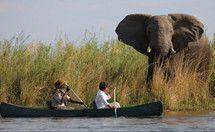 Lower Zambezi canoe safari