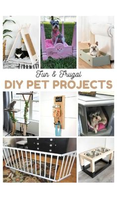 Pet Ramp, Cat House Diy, Chesire Cat, Diy Cat Tree, Easy Pets, Do It Yourself Furniture, Animal Projects, Diy Stuffed Animals, Pet Project