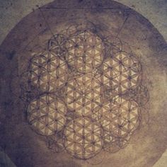 Leonardo da Vinci's drawing of the Flower of Life