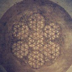 Leonardo da Vinci's drawing of the Flower of Life