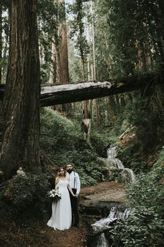 Beach, woods, and waterfalls - Big Sur has it all | Image by Krista Ashley Photography