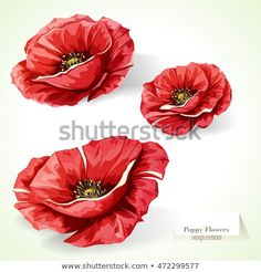 Search millions of royalty free stock images, photos, videos, and music. Get inspired by of new, high-resolution stock images added daily. Colorful Flowers, Beautiful Flowers, Moon Drawing, Image 3d, Crochet Square Patterns, Remembrance Day, Sewing Art, Botanical Drawings, Cool Diy Projects