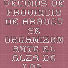 Vecinos de provincia de Arauco se organizan ante el alza de los atentados ----------- www.economiaynegocios.cl