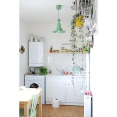 Cuisine végétale / Green Home / Plants in the kitchen / Mint