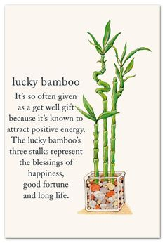 Meanings of Life - Page 3 of 9 - Cardthartic Words Quotes, Life Quotes, Sayings, Flower Meanings, Feng Shui Tips, Symbols And Meanings, Spiritual Symbols, Lucky Bamboo, Life Page