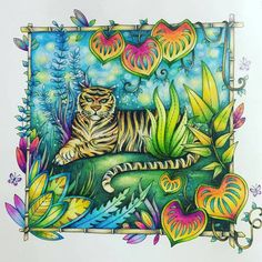 Que lindeza de colorido!!!! @Regrann from @colorsbykat -  #selvamagica…