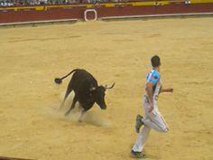 feria del toro castellon 2013