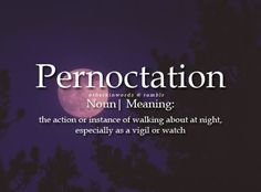 Pernoctation: the action or instance of walking about at night, especially as a vigil or watch Unusual Words, Weird Words, Rare Words, Unique Words, Cool Words, Fancy Words, Big Words, Words To Use, Pretty Words